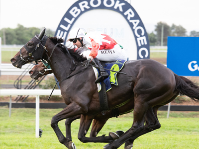 Muswellbrook Gold Cup