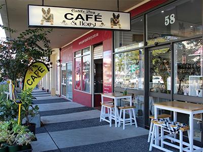 Cattle Dog Café